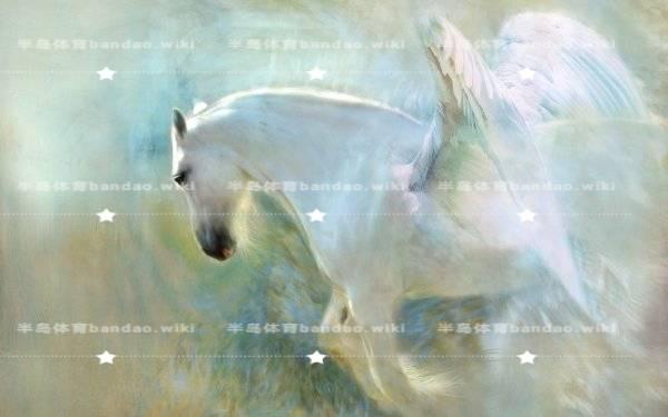 """布吉北大青鸟:2016""""失业潮""""来袭怎么办"""